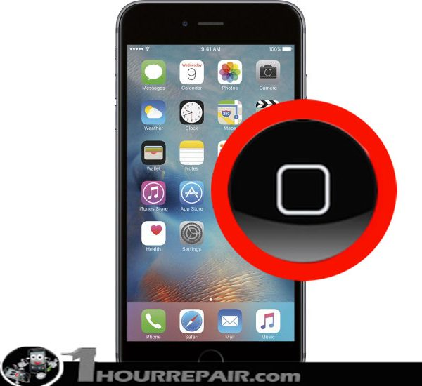 Iphone 6s+ Home Button